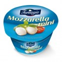 FORMAGIA  MOZZARELLA MINI 125G